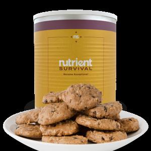 NS Oatmeal Raisin Cookies
